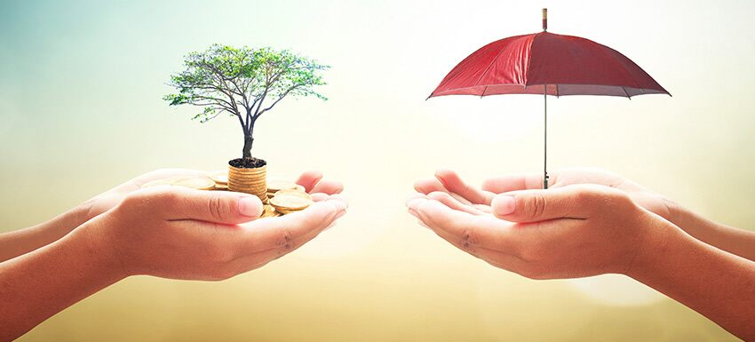 Why senior citizens should buy term insurance